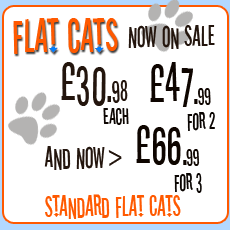 Flat Cats - Window protection for cats - available now from this site